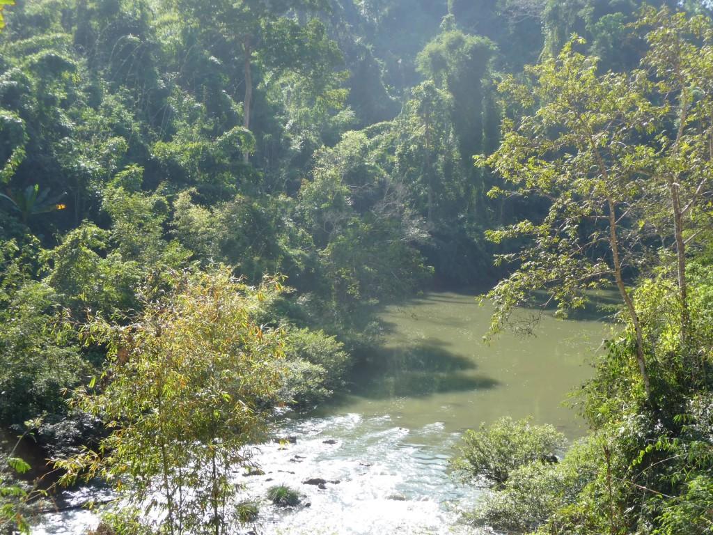 Luang Namtha's Nam Ha NPA & Nam Tha river