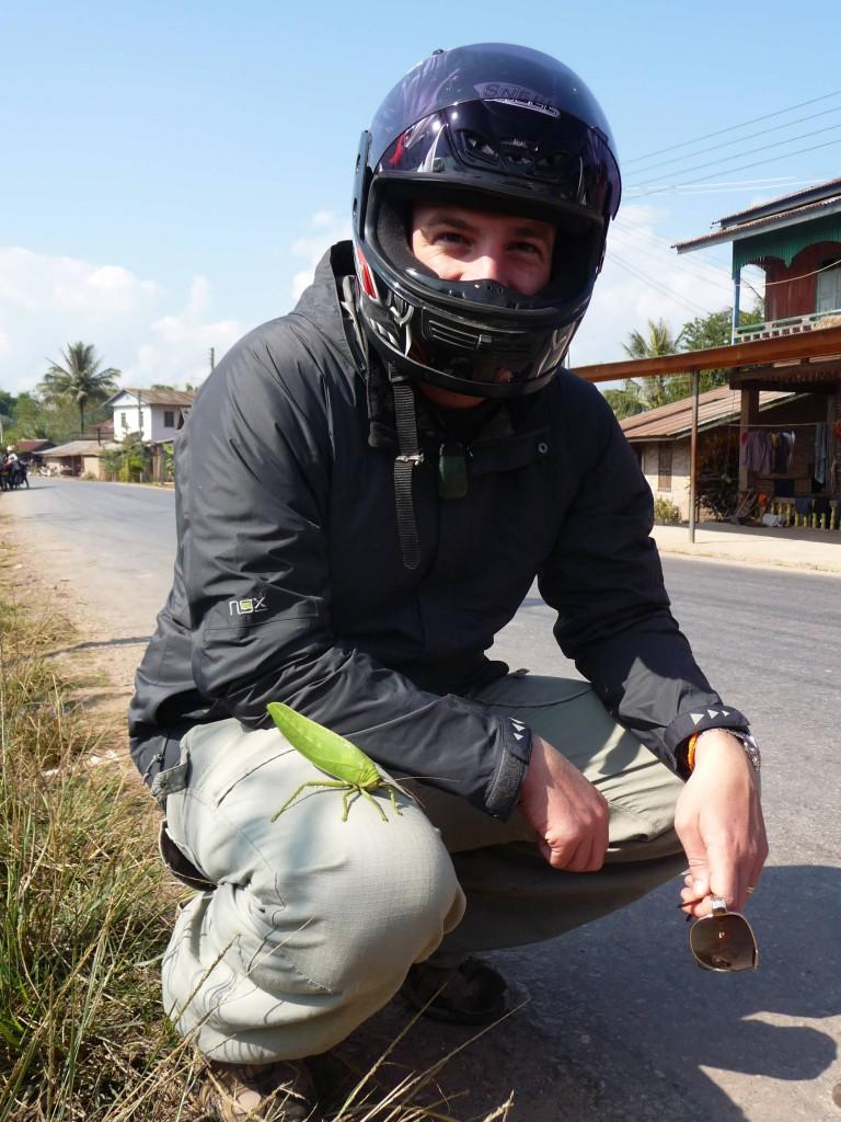 Muang Sing, Luang Namtha wildlife
