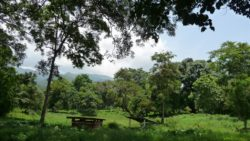Nature in Luang Namtha