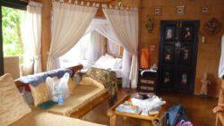 Holiday in Chiang Rai