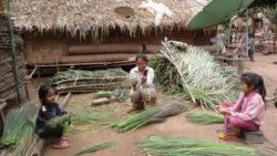 Village life - January is broom making time of year