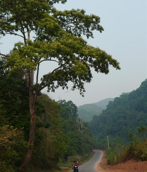 Motorbiking in northern Laos