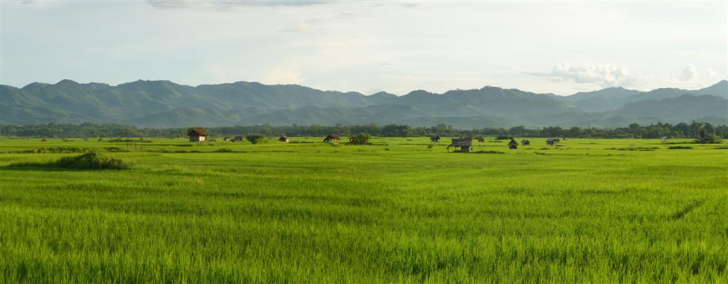 Nature in northern Laos