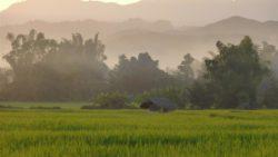 Nature Luang Namtha