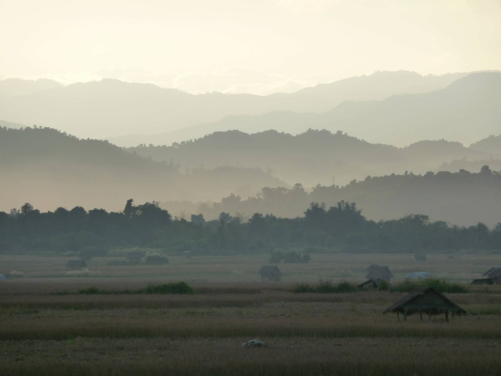 Luang Namtha mountains and rice fields
