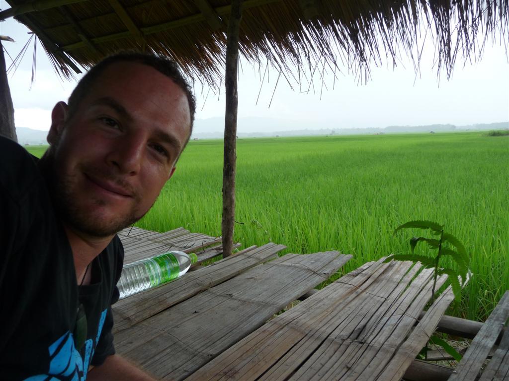 Rice in Luang Namtha