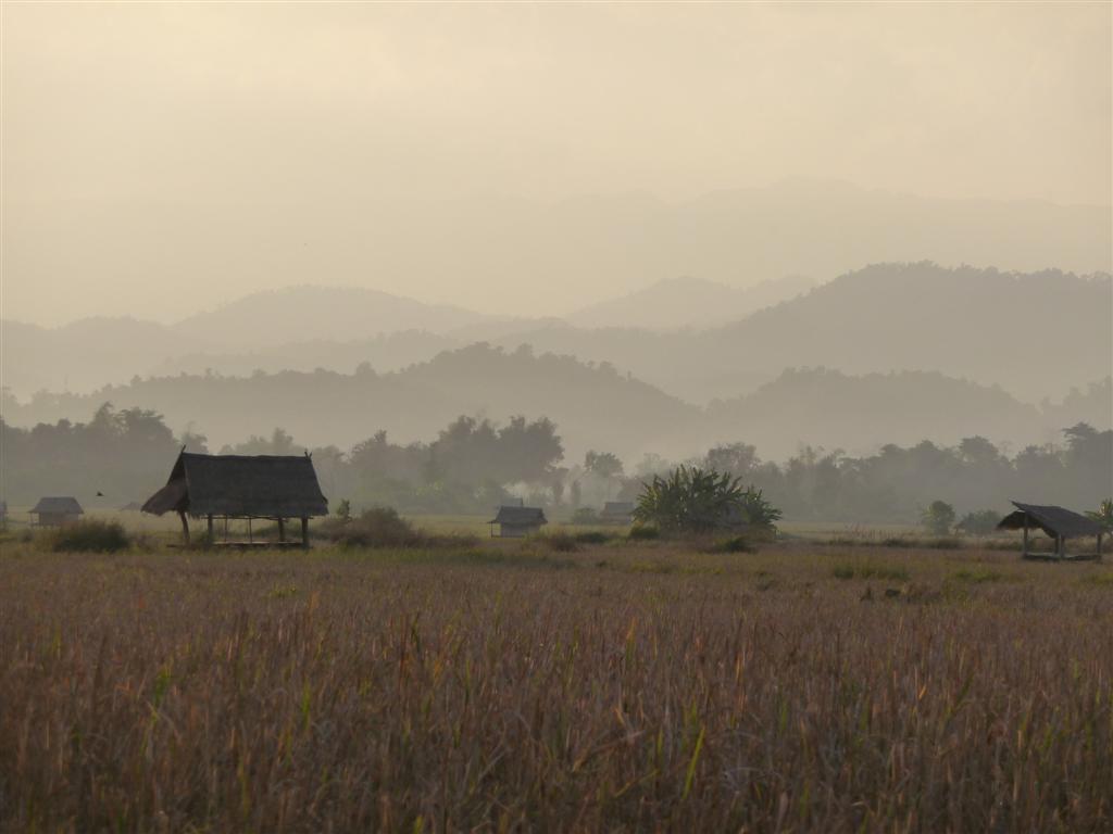Beautiful Luang Namtha rice fields
